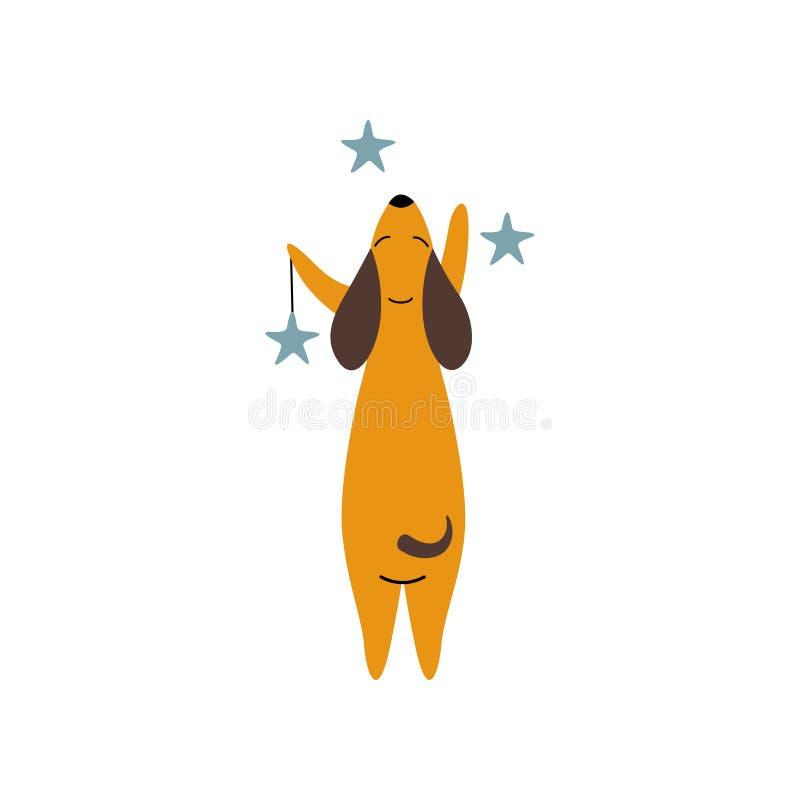与星的纯血统布朗达克斯猎犬狗,滑稽的嬉戏的宠物卡通人物站立在两条腿的,看法 皇族释放例证