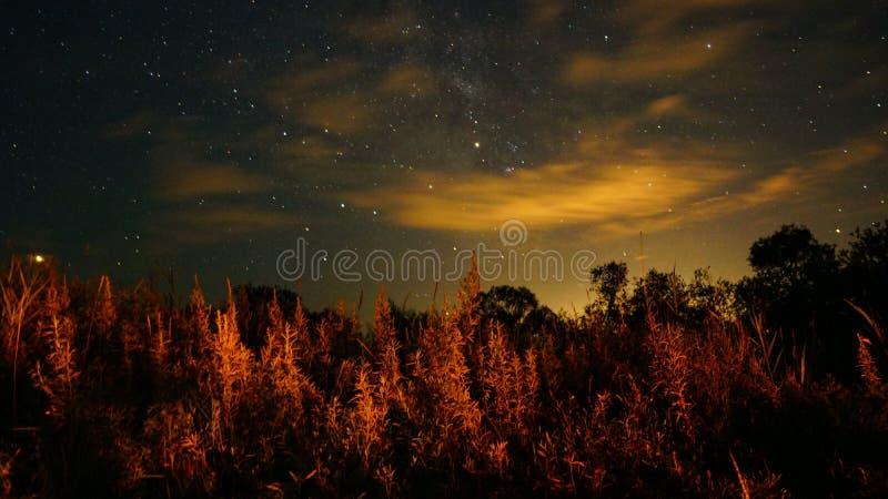 与星的美丽的夏夜天空在俄罗斯冒险远东,宇宙 免版税库存照片