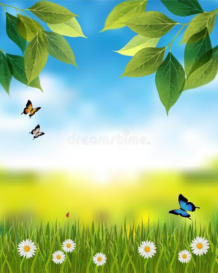 与春天场面的自然背景 皇族释放例证