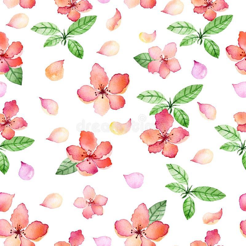 与春天精美花和叶子的水彩花卉无缝的样式 向量例证