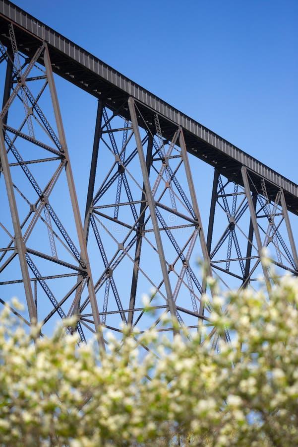 与春天花的莱斯布里奇高架桥 库存图片