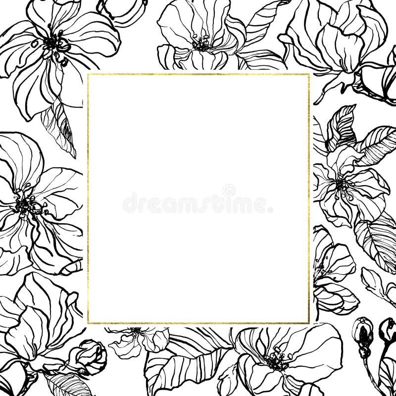 与春天苹果或樱花的葡萄酒植物的手拉的墨水例证 与金几何框架的柔和的被着墨的花 向量例证
