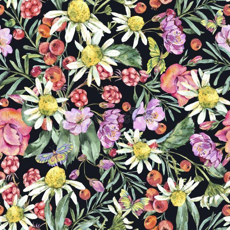 与春黄菊、莓果、野花、黑莓和蝴蝶的水彩夏天无缝的样式 皇族释放例证