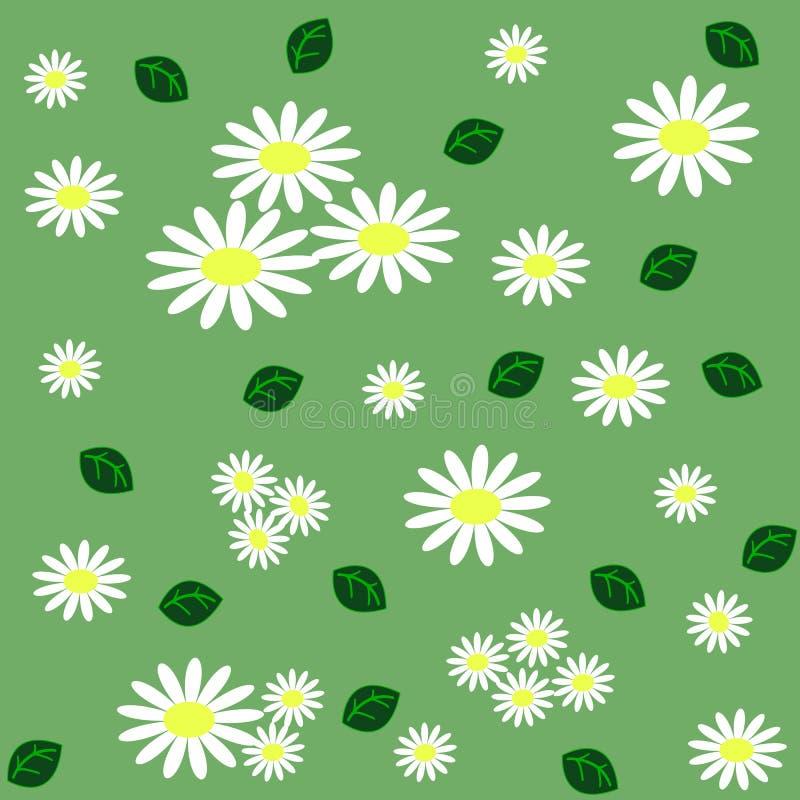 与春黄菊的花卉无缝的样式和绿色在lig离开 皇族释放例证
