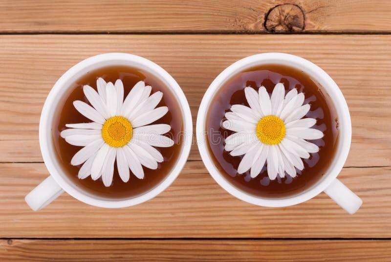 与春黄菊的茶 库存图片