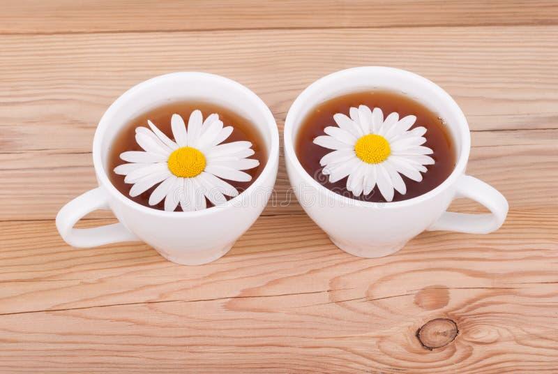 与春黄菊的茶 免版税库存图片