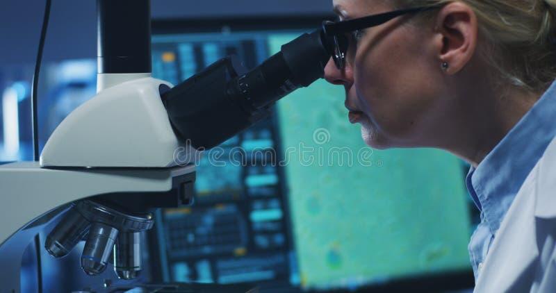 与显微镜的科学家审查的细菌 免版税库存照片