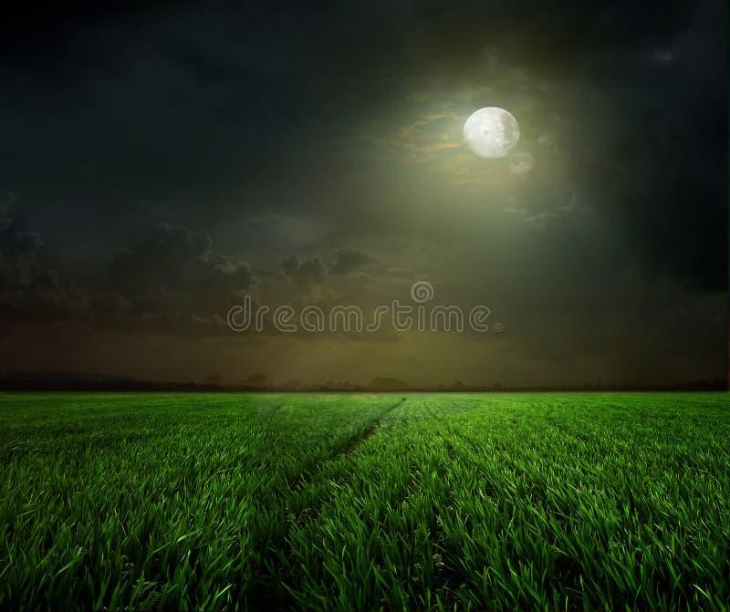与月亮的农村晚上 图库摄影