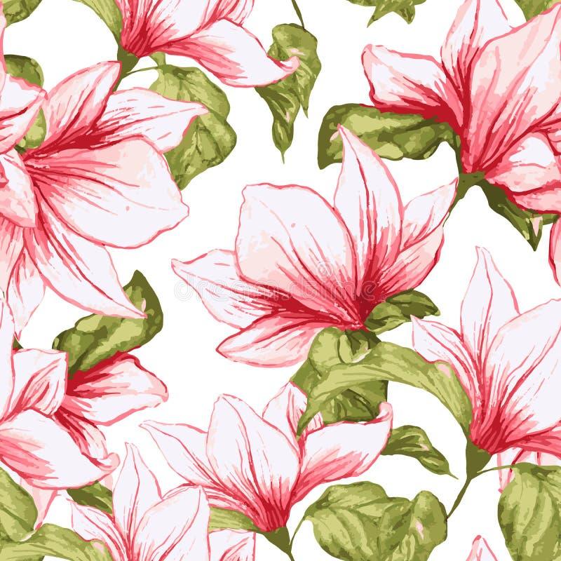与木兰的无缝的样式在白色背景开花 新织品的夏天热带开花的桃红色花 皇族释放例证