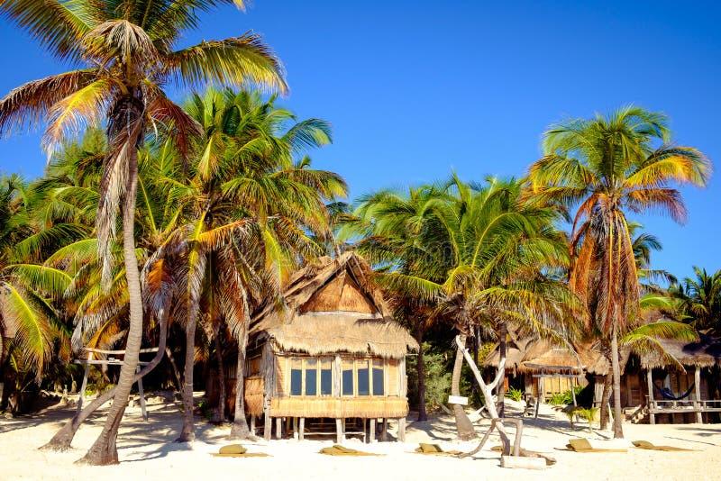 与木客舱和棕榈树的美好的夏天海滩风景 库存照片