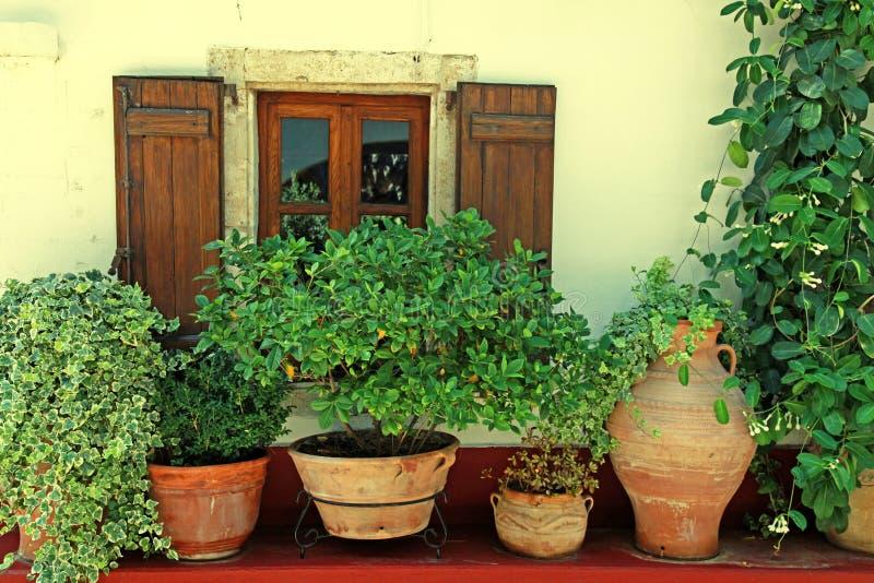 与木快门和花盆(克利特,希腊)的窗口 库存图片