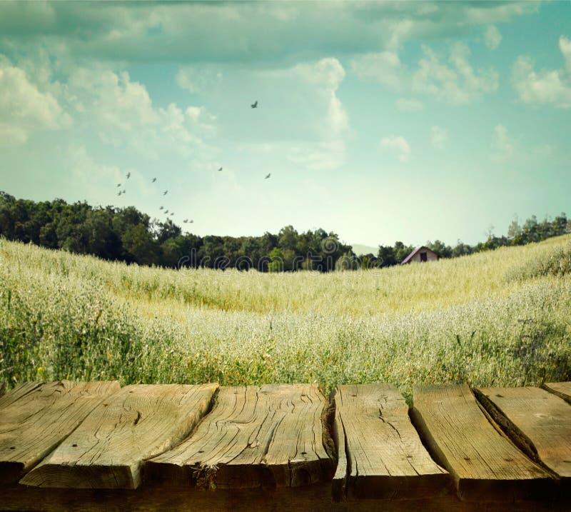 与木板条的自然背景 库存照片