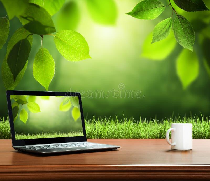 与木桌的夏天背景 库存图片