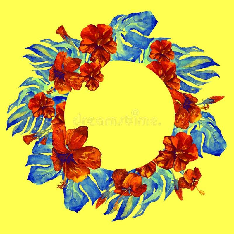 与木槿的热带圈子框架和与木槿的Monstera水彩手画热带夏天主题 皇族释放例证