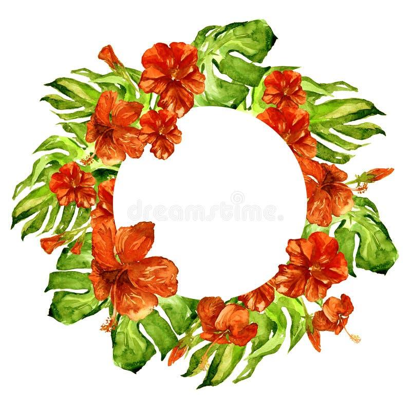 与木槿的热带圈子框架和与木槿的Monstera水彩手画热带夏天主题 向量例证