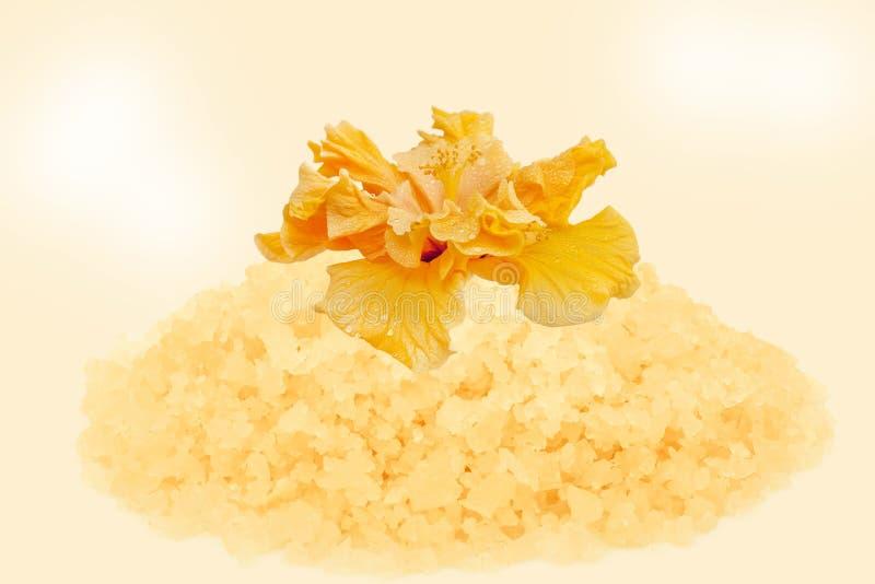 与木槿解压缩的盐  免版税库存照片