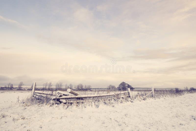 与木篱芭的冬天风景 库存照片