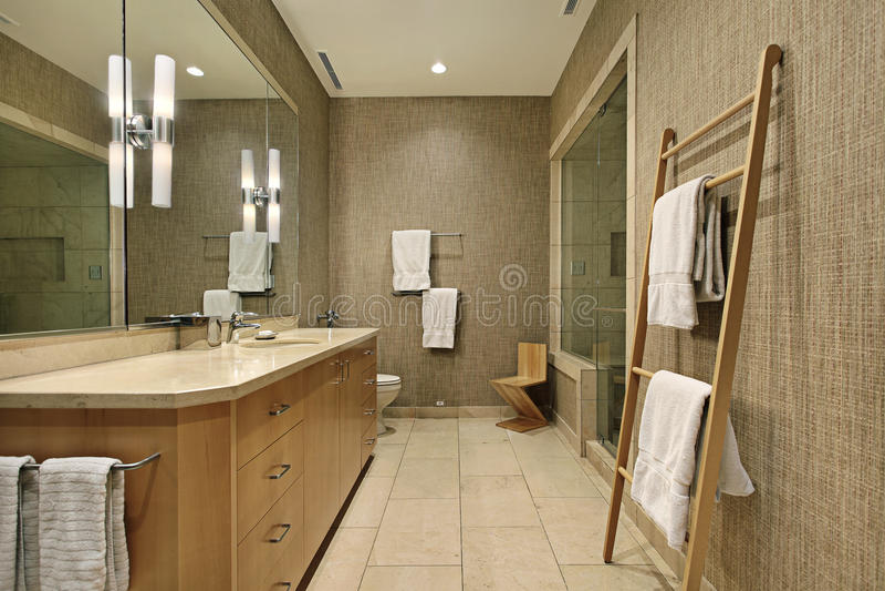 与木细木家具的主浴室 免版税库存照片