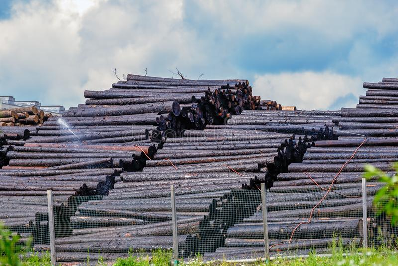 与木馏油的注入木材木保存的 免版税库存照片