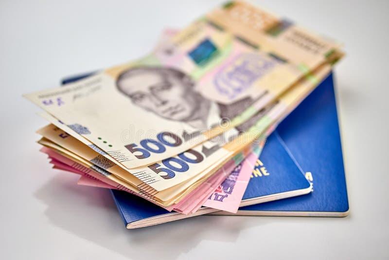与本国货币纸币关闭的护照现金看法  免版税库存图片
