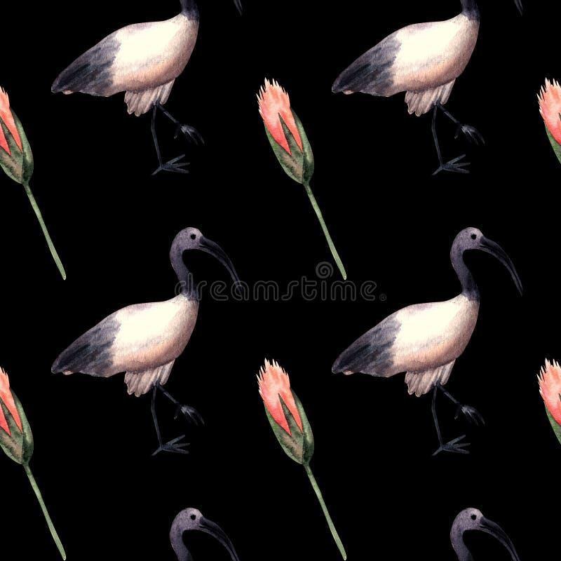 与朱鹭,埃及标志的无缝的样式水彩 皇族释放例证