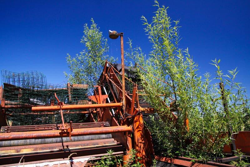 与杂草的被隔绝的红色红色生锈的农业机器等级在荷兰农厂agains天空蔚蓝 库存图片