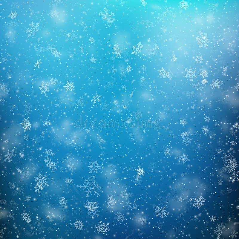 与杉木分支的圣诞节在白色隔绝的框架和阴影 10 eps 皇族释放例证