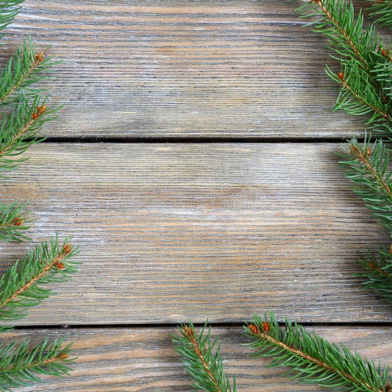 与杉木分支的圣诞节框架在木板 免版税库存照片