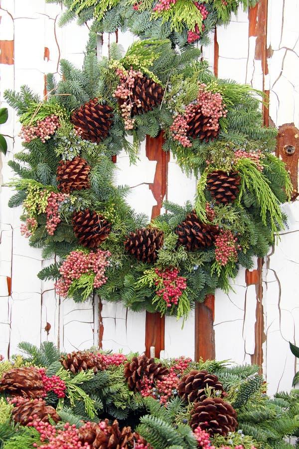 与杉木锥体的常青圣诞节花圈 免版税库存图片