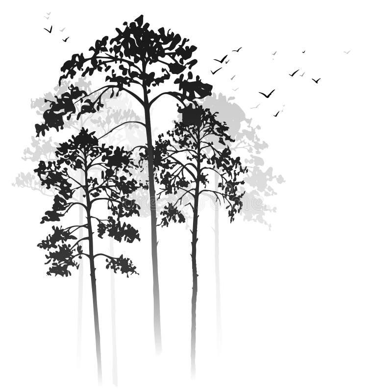 与杉树的传染媒介风景 向量例证