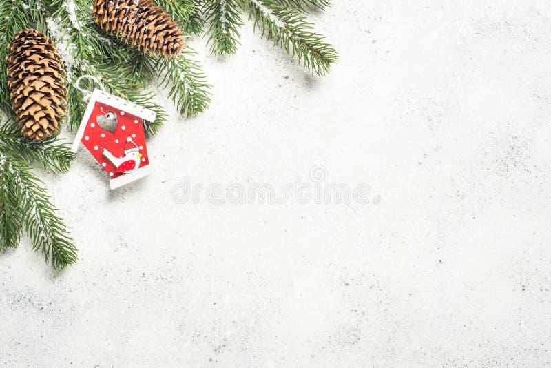 与杉树的圣诞节在白色bac的背景和装饰 图库摄影