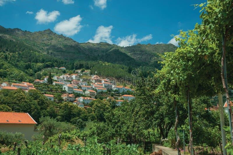 与村庄的乡下风景在小山 免版税库存图片