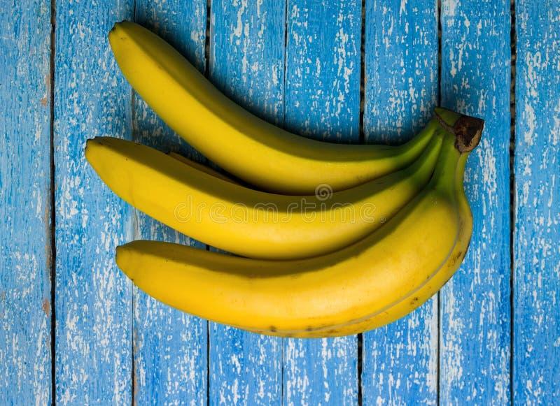 与束生长成熟黄色香蕉,种植园雨林背景,丰沙尔,马德拉岛的香蕉树 免版税库存照片