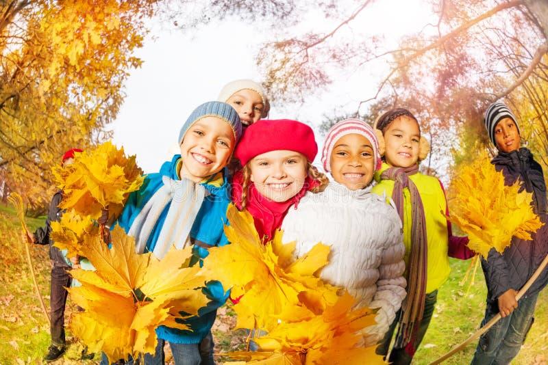 与束的正面孩子黄色槭树离开 库存图片