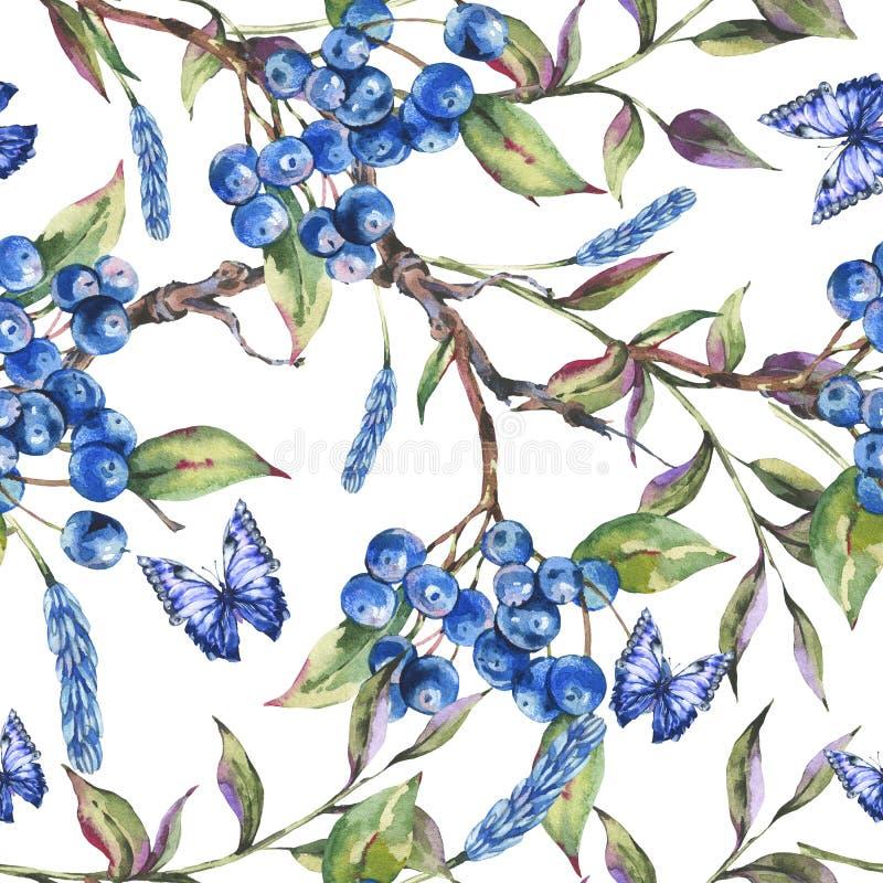 与束的水彩夏天森林无缝的样式深蓝莓果,绿色叶子,蝴蝶 向量例证