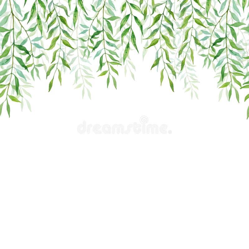 与杨柳分支和叶子的水平的无缝的背景  库存例证