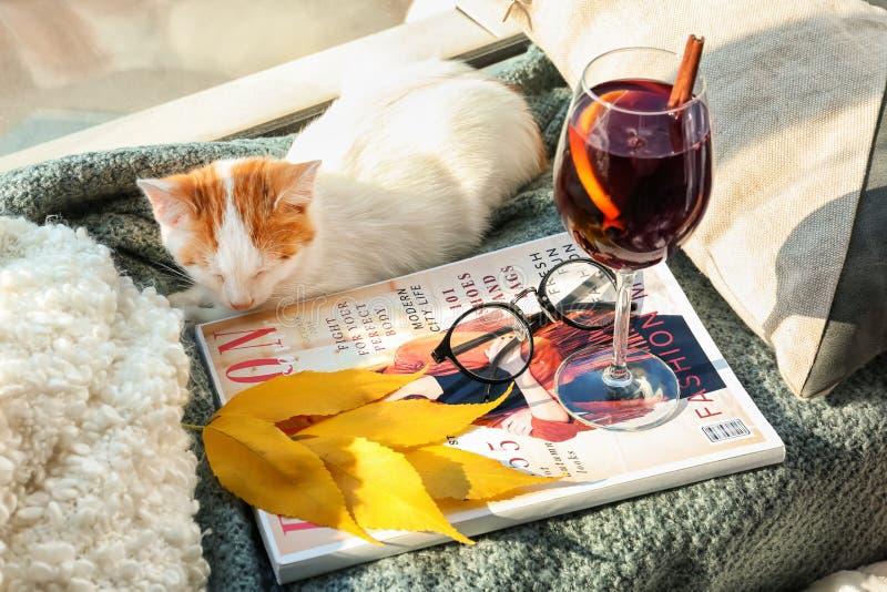 与杯的逗人喜爱的小的小猫可口加香料的热葡萄酒和杂志在格子花呢披肩在家 免版税图库摄影