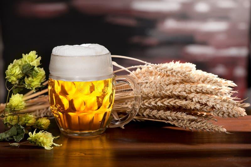 与杯的静物画啤酒 免版税图库摄影