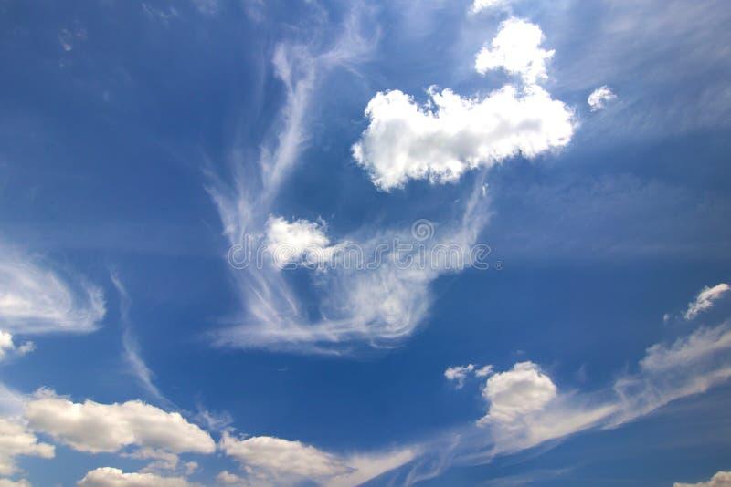 与松的白色云彩的剧烈的蓝天在明亮清楚晴朗 库存图片