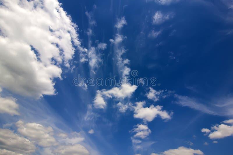与松的白色云彩的剧烈的蓝天在明亮的清楚的春天 免版税库存照片