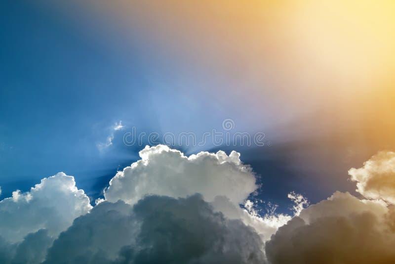 与松的白色云彩的蓝天在明亮的清楚的晴天 免版税库存图片