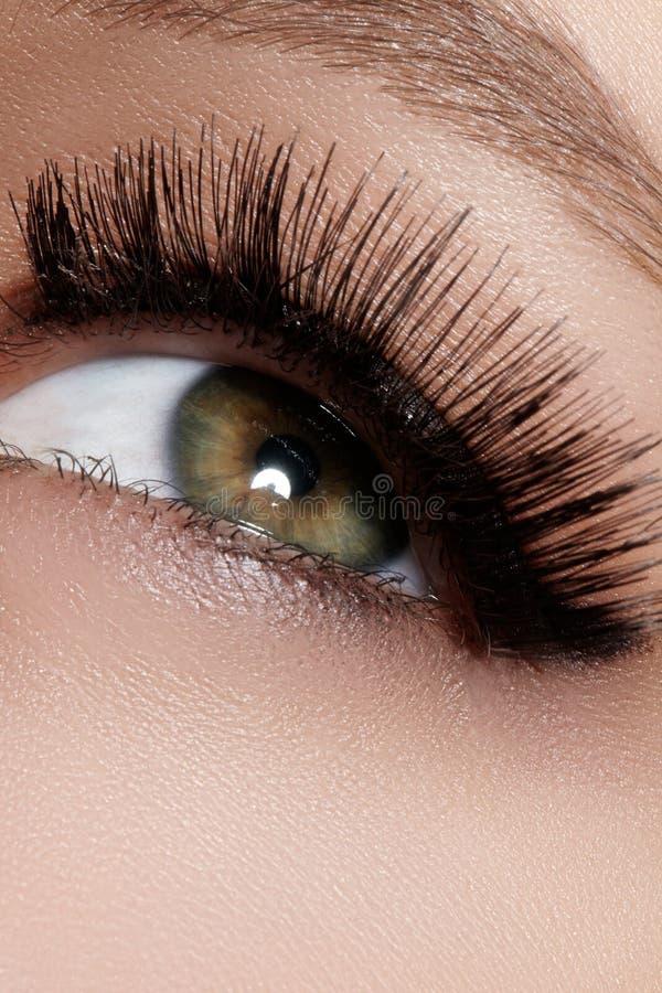 与极端长的睫毛的美丽的女性眼睛,黑划线员构成 完善的构成,长的鞭子 特写镜头时尚眼睛 免版税库存照片