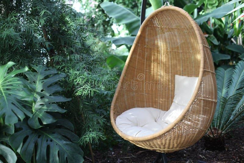 与枕头的藤条长圆形垂悬的椅子在热带植物中 免版税库存图片