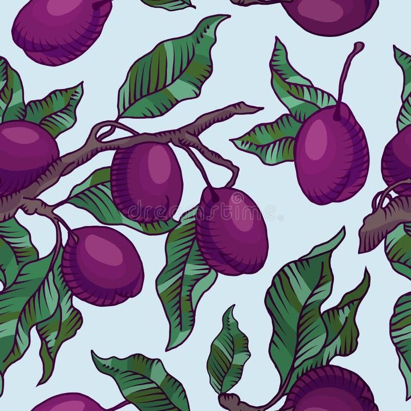 与果子无缝的样式的李子分支 向量例证