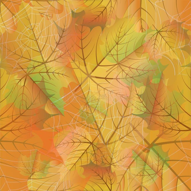 与枫叶和蜘蛛网,传染媒介的秋天无缝的背景 库存例证