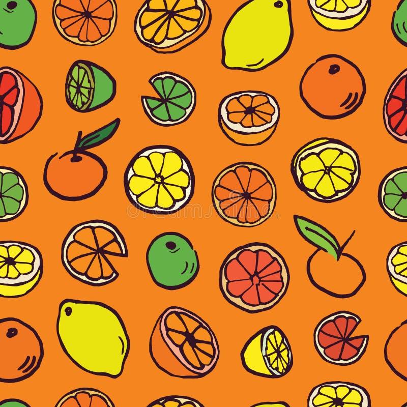 与柑橘的样式背景 库存例证
