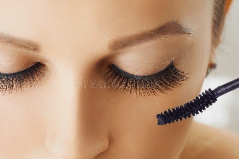 与染睫毛油极端长的睫毛和刷子的女性眼睛  构成,化妆用品,秀丽 库存照片