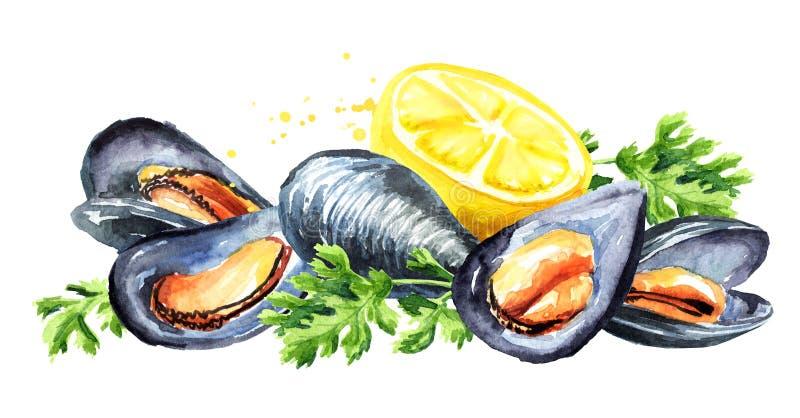 与柠檬和草本海鲜构成,水彩手拉的例证的淡菜,隔绝在白色背景 皇族释放例证