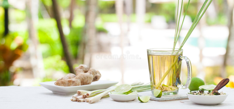与柠檬香茅和姜的草本绿茶 库存图片