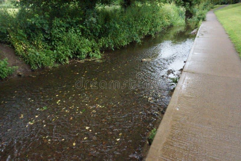 与树反射的流动的小河 免版税库存照片